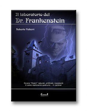 Il laboratorio del dottor Frankenstein